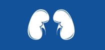 Renal Health Tip Sheet PDF