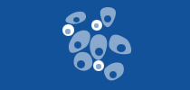 Multiple Myeloma Overview Tip Sheet