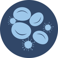 Anemia and Myelosuppression